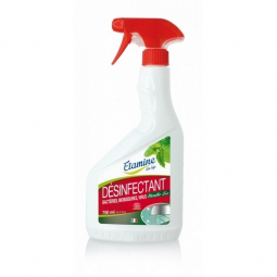 Désinfectant 750ml ETAMINE DU LYS