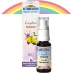 Vente Complexes n°6 Confiance Bio Spray 20ml BIOFLORAL