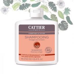 Shampoing Vinaigre de Romarin Cheveux Gras Bio 250ml CATTIER