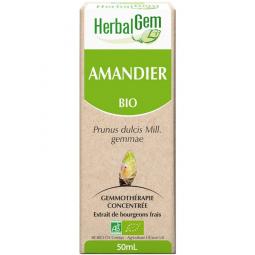 Amandier - 50 ml