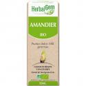 Amandier - Macérat-mère 50 ml