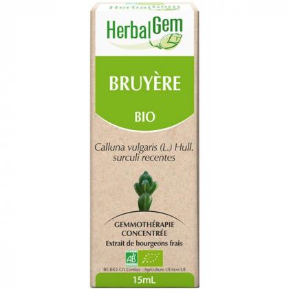 Bruyère - Macérat-mère 15ml