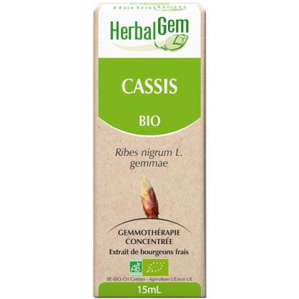 Cassis - Macérat-mère 15ml