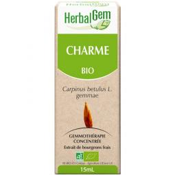 Charme - Macérat-mère 15ml