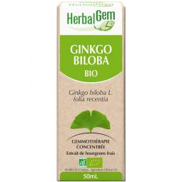 Ginkgo biloba - Macérat-mère 50ml