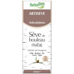 Artiseve - 250ml