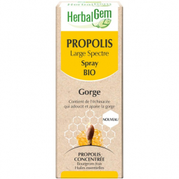 Propolis large spectre - Spray 15ml