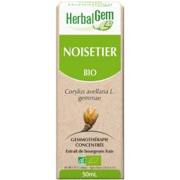 Noisetier - Macérat-mère 50ml