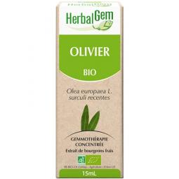 Olivier - Macérat-mère 15ml