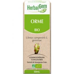 Orme - Macérat-mère 50ml
