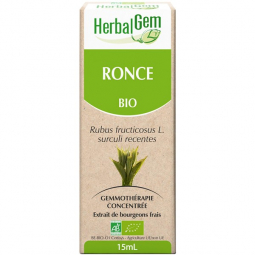 Ronce - Macérat-mère 15ml