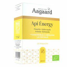 Api'Energy - 10 ampoules
